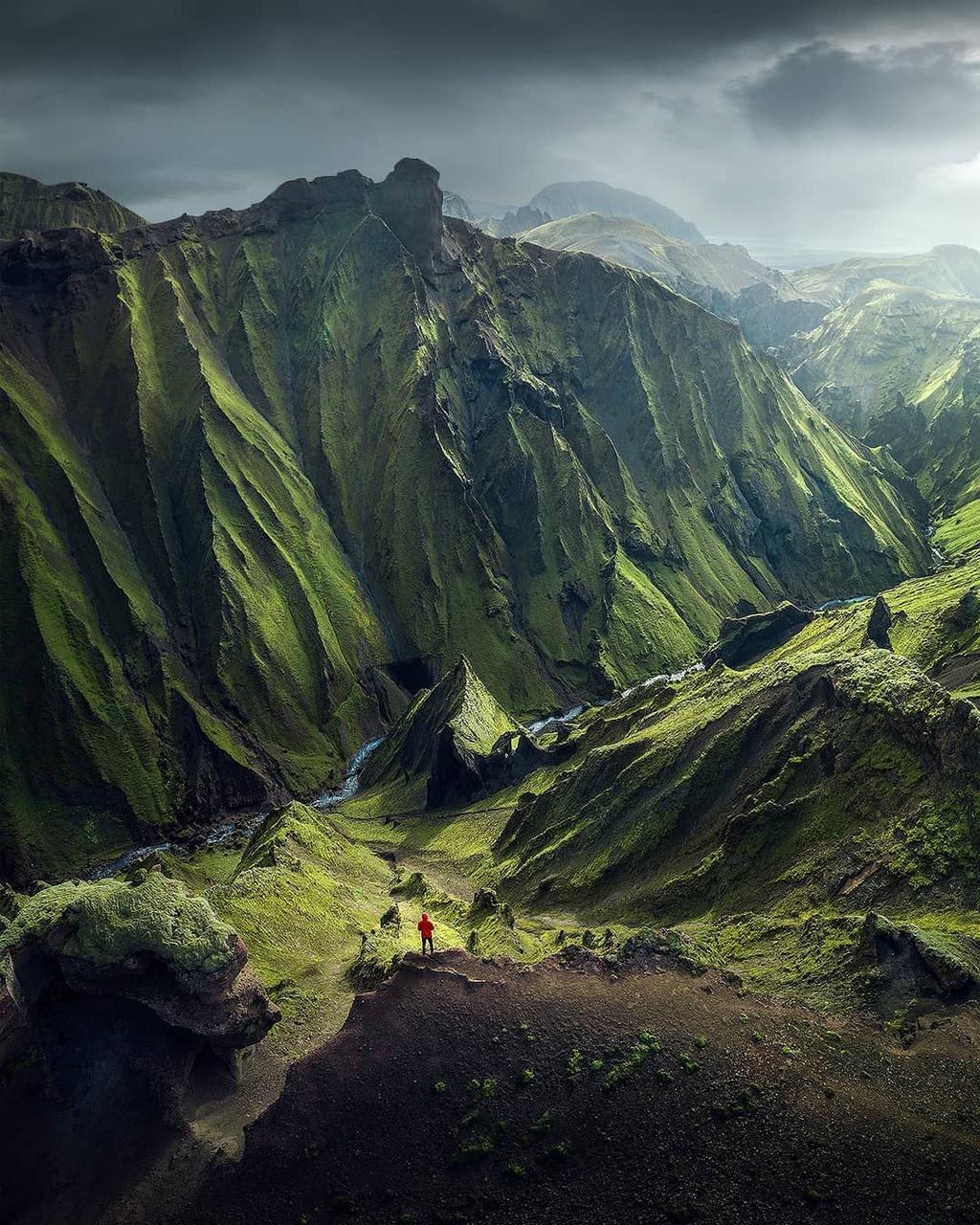 Ngoài việc góp phần tạo nên các cảnh quan đẹp như tranh vẽ, rêu Iceland còn có vai trò quan trọng trong hệ sinh thái của đất nước. Trước hết, rêu ngăn chặn xói mòn đất, vấn đề phát sinh ở Iceland kể từ khi rừng bị phá hủy hàng loạt. Bên cạnh đó, loài thực vật này hấp thụ nước và giữ độ ẩm, do đó lưu trữ vô số vi sinh vật cần thiết cho các vùng đất ở đây.