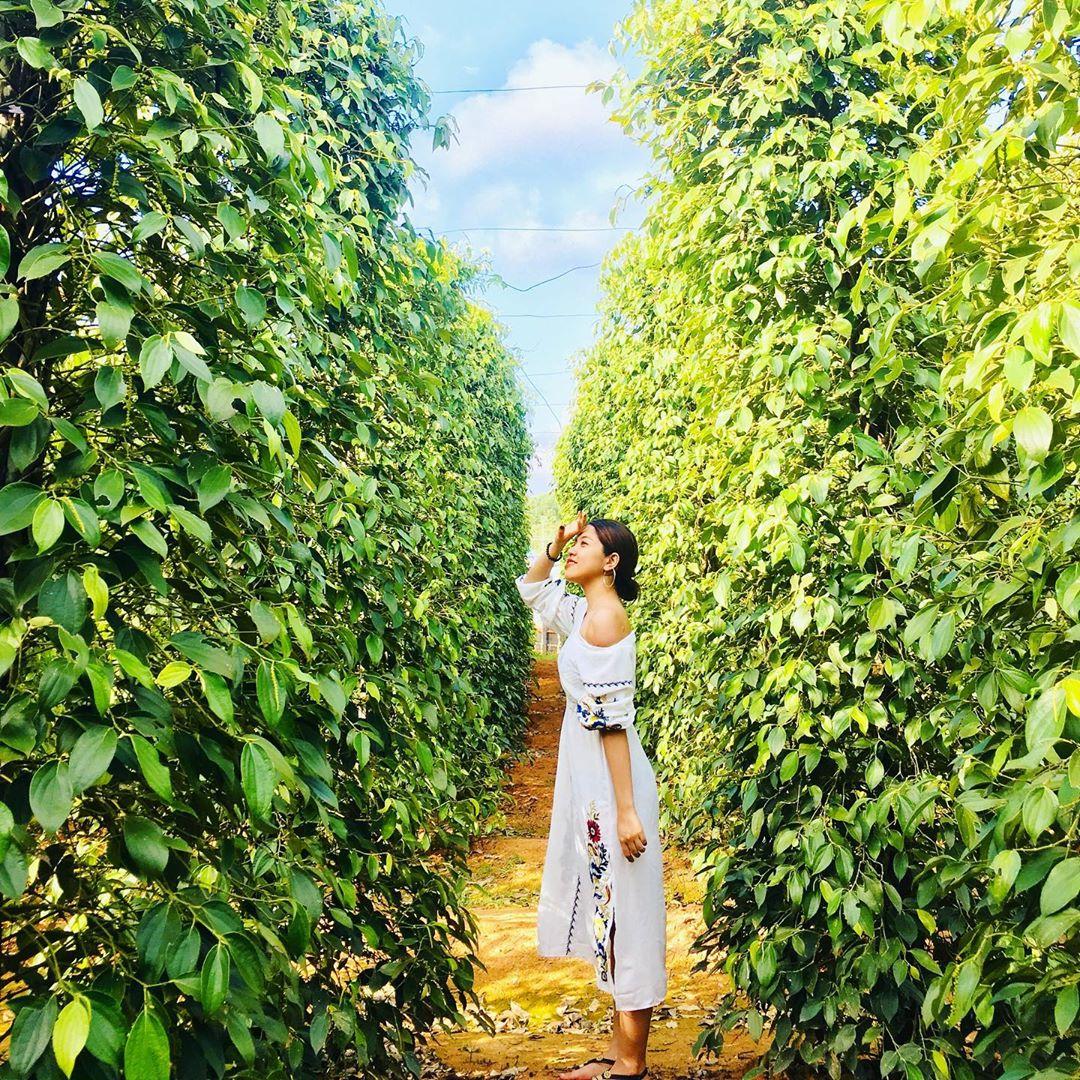 Trải nghiệm tour Phú Quốc 3N2Đ khám phá Đảo Ngọc chỉ từ 3.390.000 đồng/khách – iVIVU.com