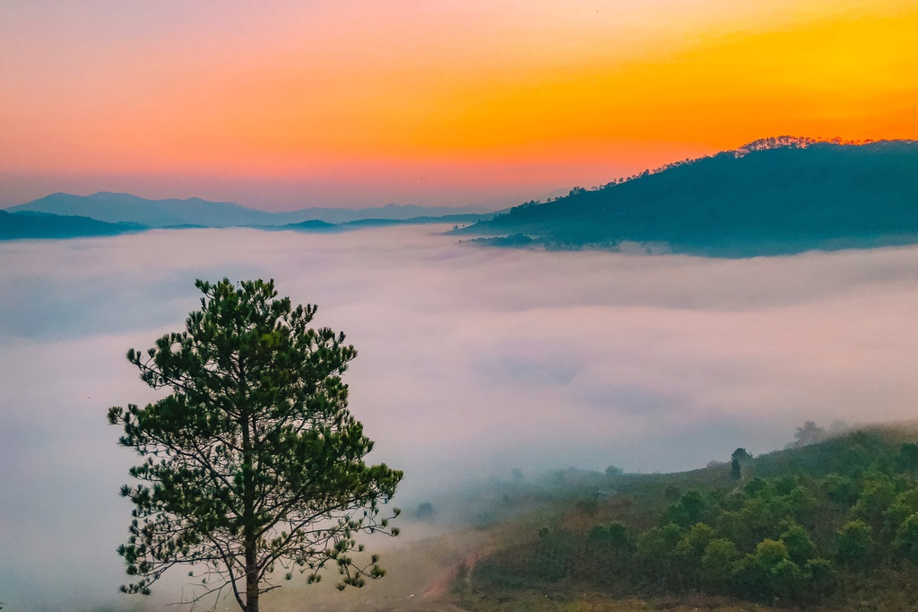 Trong trường hợp quá lười để thực hiện chuyến săn mây, du khách hoàn toàn có thể trải nghiệm ngắm khung cảnh này ngay trong phòng. Đà Lạt có nhiều homestay đẹp với view đồi núi. Chỉ cần chịu khó dậy sớm, bạn đã có thể ngắm trọn quang cảnh mây phủ khắp đồi núi.