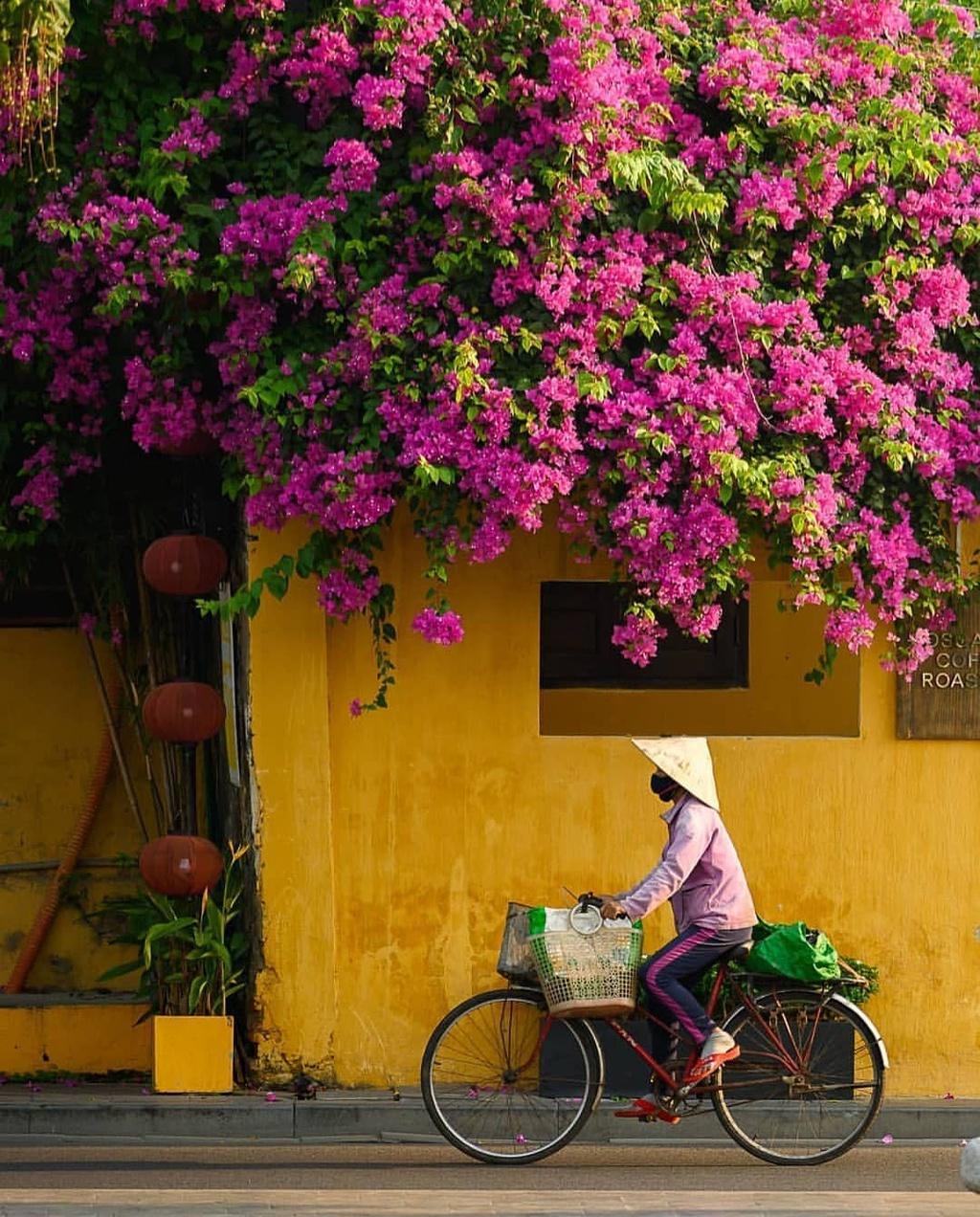 """Hội An (Quảng Nam) vốn là điểm đến được lòng nhiều du khách quốc tế. Một trong những trải nghiệm tại Hội An chưa nhiều người Việt để ý nhưng lại hấp dẫn khách Tây là may đồ tại tiệm may truyền thống. Blogger của trang Seenicwander gợi ý du khách nên một lần mặc đồ may ở phố cổ. """"Các hàng vải, tiệm may truyền thống là nét đep văn hóa đặc trưng lại Hội An. Bạn có thể tự chọn một khúc vải, đặt tiệm may theo số đo yêu cầu và nhận sản phẩm trong ngày"""", blogger trang Seenicwander viết. Ảnh: sheisnotlost, nomadvietnam."""