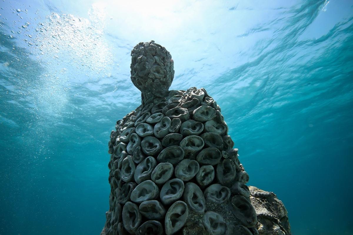 Tác phẩm Tai được sáng tác từ khuôn tai của 30 đứa trẻ, đặt ở độ sâu 5 m. Tác phẩm có gắn micro và bộ nhớ, để liên tục ghi lại những âm thanh xung quanh. Điều này có thể giúp các nhà khoa học theo dõi tình trạng của rạn san hô. Ảnh: Jason deCaires Taylor.