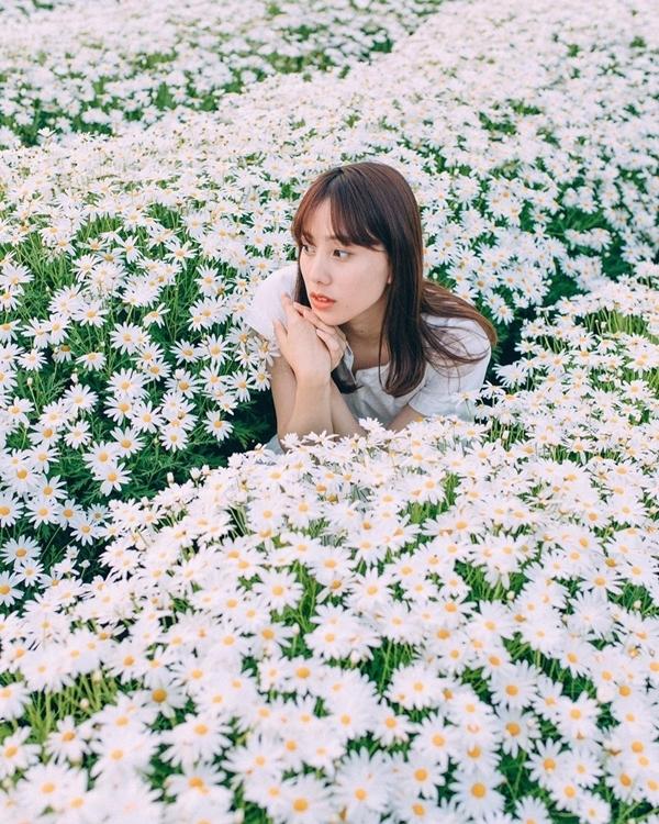 """Du khách có thể đi vào giữa luống hoa để """"sống ảo"""". Vườn hoa mở cửa miễn phí quanh năm, từ sáng đến tối nên bạn có thể ghé bất kì lúc nào, kể cả mùa lễ. Bãi đỗ xe gần đó, đủ sức chứa khoảng 20 chiếc cũng không thu phí. Ảnh mayuri_okumura"""