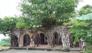 Đình cổ Tân Đông