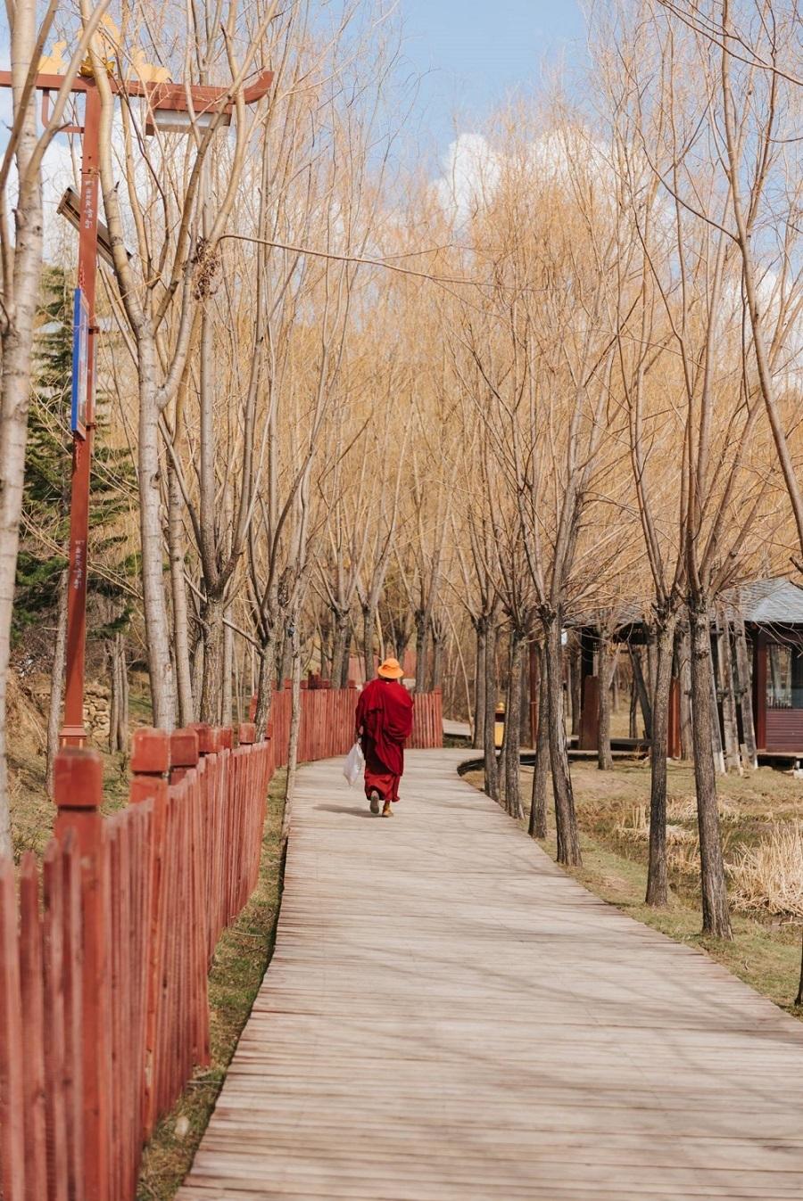 Những con đường ở Shangri-la quanh co và vắng lặng, nên thơ. Đâu đó bạn sẽ bắt gặp các vị Lạt Ma trên đường trong trang phục sẫm màu đặc trưng. Số người theo Phật giáo Tây Tạng ở đây rất đông. Đây là một hệ phái quan trọng thuộc Phật giáo Kim cương thừa, được truyền bá nhiều nơi quanh Hy Mã Lạp Sơn, đặc biệt ở Tây Tạng.