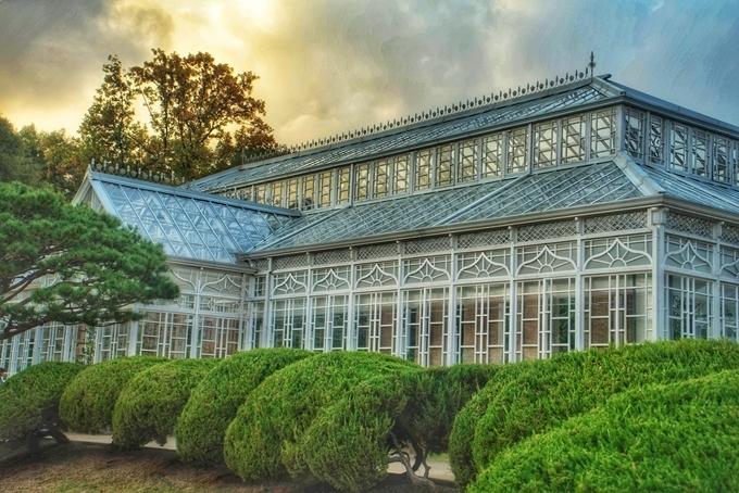 Bộ khung bên ngoài bằng thép kết hợp gỗ sơn trắng, lợp kính hoàn toàn để trồng cây. Trải qua nhiều năm, phần lớn nhà kính bị ăn mòn, xuống cấp nên nó được trùng tu vào 2016, rồi bắt đầu mở cửa đón khách tham quan từ 2017 đến nay. Ảnh Shutterstock