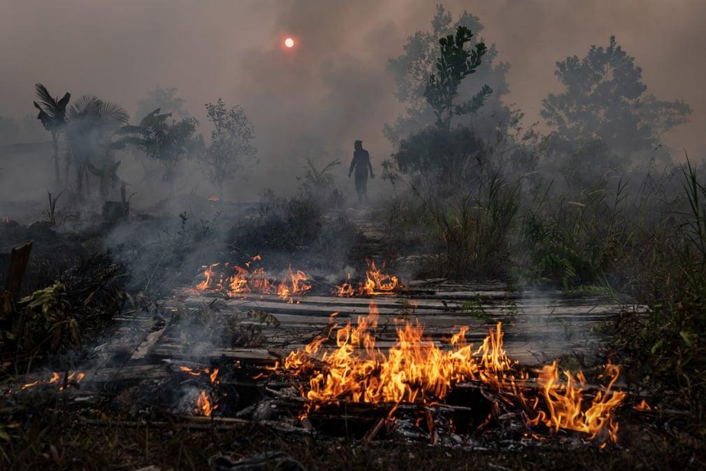 Một lính cứu hỏa đứng trong màn khói mờ ảo khi đang cố gắng dập tắt vụ cháy rừng ở Kalimantan (Indonesia). Những vụ cháy rừng nghiêm trọng gây ô nhiễm không khí nặng nề ở Indonesia và một số nước Đông Nam Á. Ảnh: Ulet Ifansasti/Getty Images.