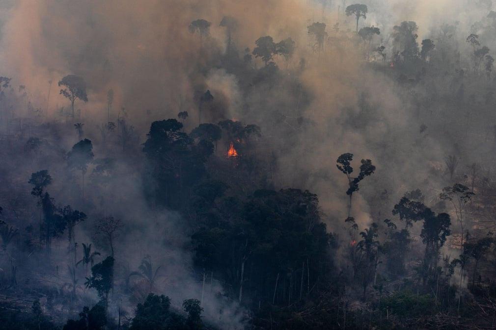 Vụ cháy rừng Amazon đã gây chú ý của truyền thông vào năm 2019. Trong những tháng cuối năm 2019, rừng mưa nhiệt đới Amazon ở Brazil đã chịu hàng nghìn vụ cháy. Bang Rondonia chịu ảnh hưởng nặng nề nhất khi người dân phải sống chung với khói bụi mù mịt. Theo nhiều chuyên gia, nguyên nhân chính của các vụ cháy rừng là do người dân phá rừng để làm nương rẫy. Ảnh: Victor Moriyama/Getty Images.