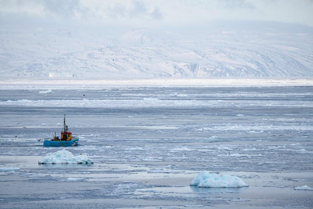 Từ Ilulissat, những chiếc thuyền đánh cá ra biển hoặc vào vịnh Disko lân cận để bắt cá tuyết, cá hồi biển và cá bơn.