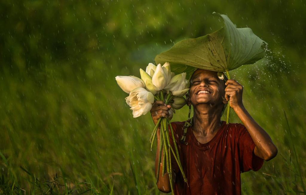 """Nhiếp ảnh gia Daula đã bắt được khoảnh khắc một em bé dùng lá sen để che mưa, tay cầm bó sen trắng, ở quận Joypurhat, Bangladesh. Ông cho biết: """"Tôi phát hiện ra cậu bé này đang hái hoa, và chỉ một lát sau, mưa bắt đầu trút xuống. Cậu ấy có nụ cười rạng rỡ, hồn nhiên và vô tư"""". Đây cũng là bức ảnh đứng đầu trong top 50 ảnh xuất sắc của cuộc thi."""