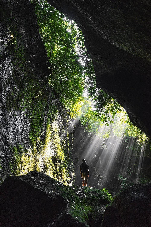"""Tác phẩm """"Sắc xanh Bali"""" của Meyer tái hiện lại hình ảnh những ray sáng xuyên qua một hang động ở Ubud, Bali, Indonesia. """"Khoảnh khắc khi ánh sáng chiếu qua ngọn cây khiến nơi này trở nên thật kỳ diệu"""", nhiếp ảnh gia nói với Agora."""