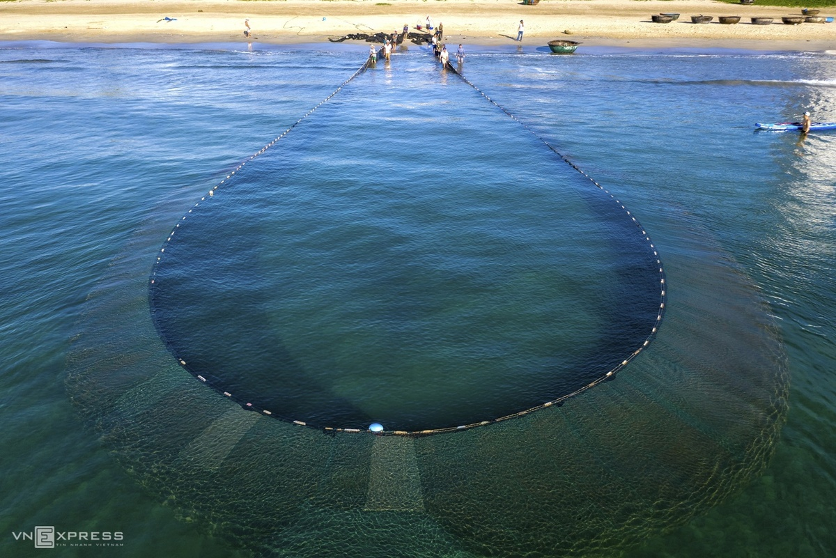 Lưới quây cách bờ hơn 1 km theo vòng cánh cung, trên bờ chia ra 2 tốp đứng về hai bên, kéo giật lùi và dần tiến lại gần nhau khi lưới được kéo lại gần bờ.