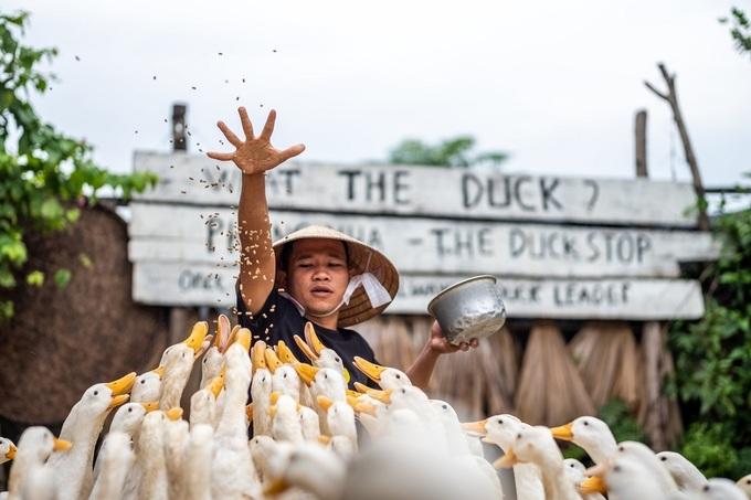 Một số gia đình ở Phong Nha biến trang trại thành khu vui chơi cho du khách, kinh doanh dịch vụ du lịch sinh thái. Du khách sẽ đến trang trại tham quan, chụp ảnh và trải nghiệm cuộc sống của người dân địa phương. Patrick Scott mua tour du lịch đến trang trại Duck Stop, nơi được rất nhiều khách phương Tây ghé thăm và chụp ảnh tự sướng với đàn vịt trắng của ông chủ.