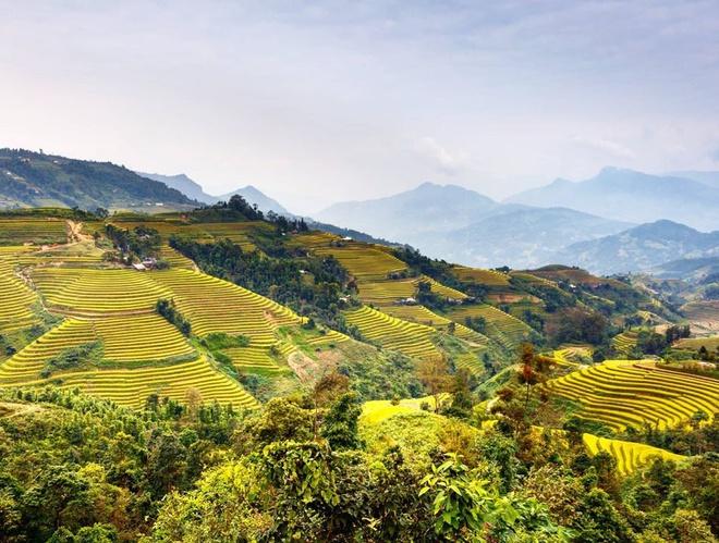 Trong lời giới thiệu về Sa Pa, Trips to Discover nhận xét đây là một trong những điểm đến hấp dẫn ở Việt Nam. Nằm ở phía Bắc, Sa Pa được bao bọc bởi những đồng ruộng bậc thang có vẻ đẹp thay đổi suốt bốn mùa. Chuyên trang du lịch còn đánh giá thị trấn mù sương là điểm đến tuyệt vời dành cho người thích khám phá, trekking. Ảnh: Dreams_vlogs.