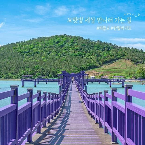 Ảnh: @Purple Island