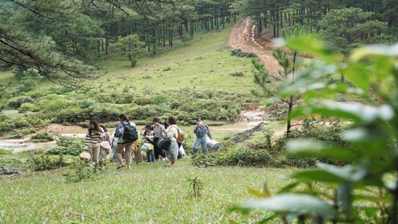 tour-da-lat-1n1d-cam-trai-tai-cay-thong-co-don-gia-chi-600000-vndkhach-ivivu-03