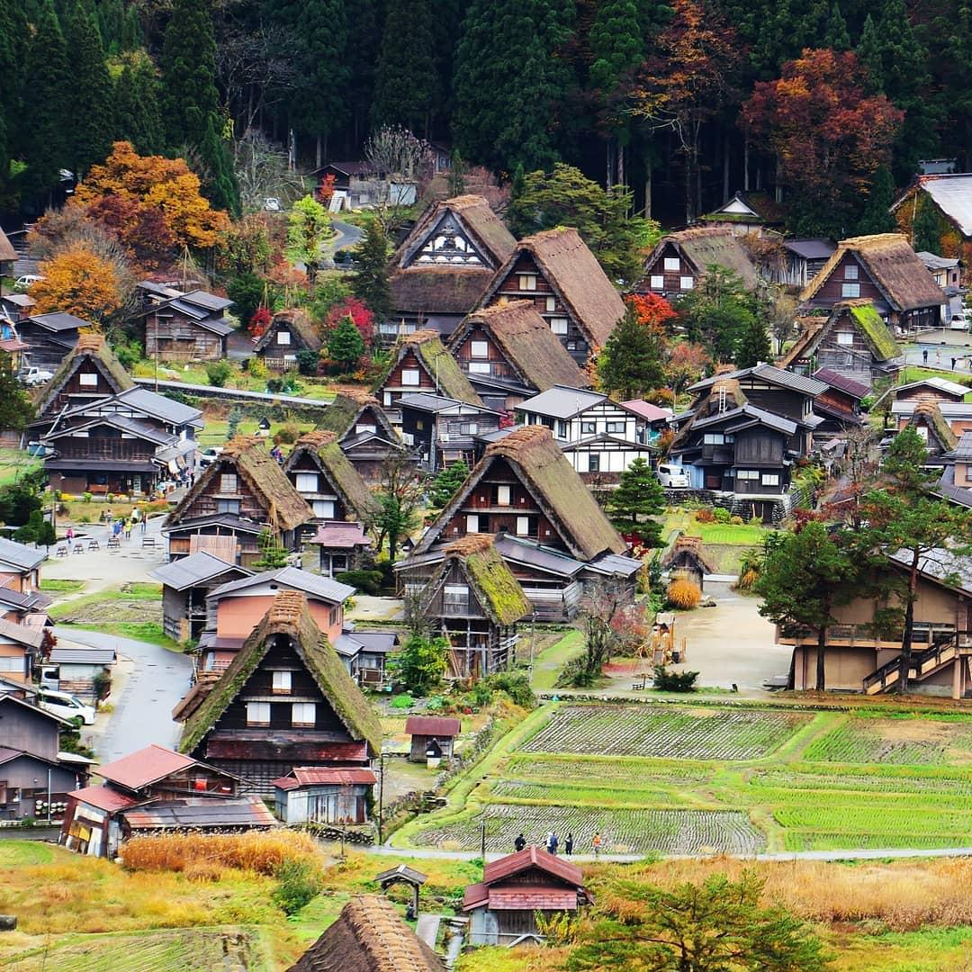 man-nhan-voi-canh-sac-chuyen-mua-o-lang-Shirakawa-Nhat-Ban-ivivu-4