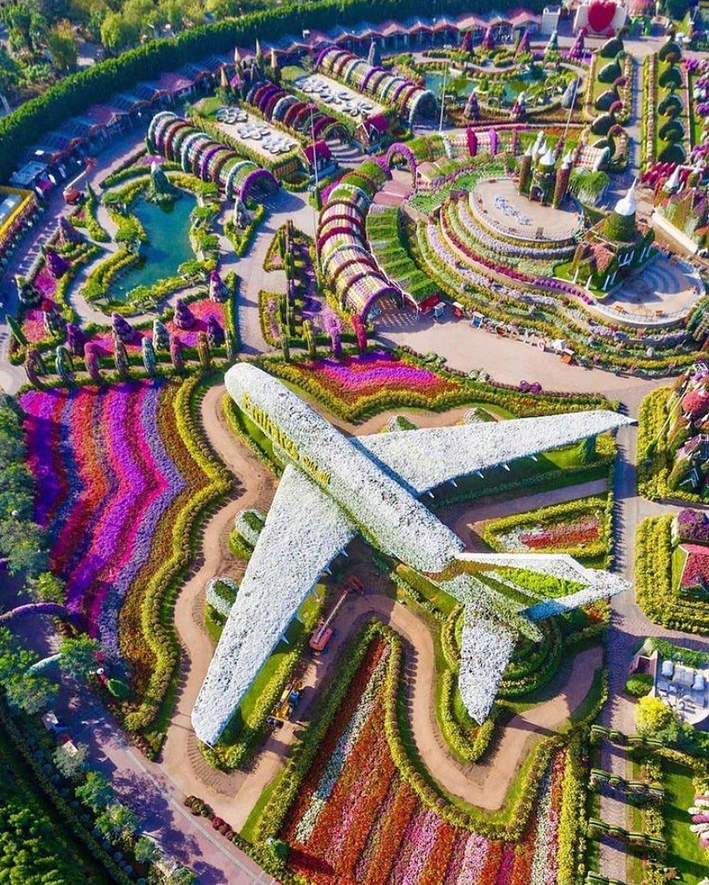 nhung-con-so-khung-o-khu-vuon-ki-dieu-tai-Dubai-ivivu-8