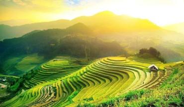 tour-mien-bac-4n3d-HCM-Yen-Bai-Dien-Bien-Mai-Chau-Moc-Chau-Hoa-Binh-gia-chi-5699000-VND-khach-ivivu-4