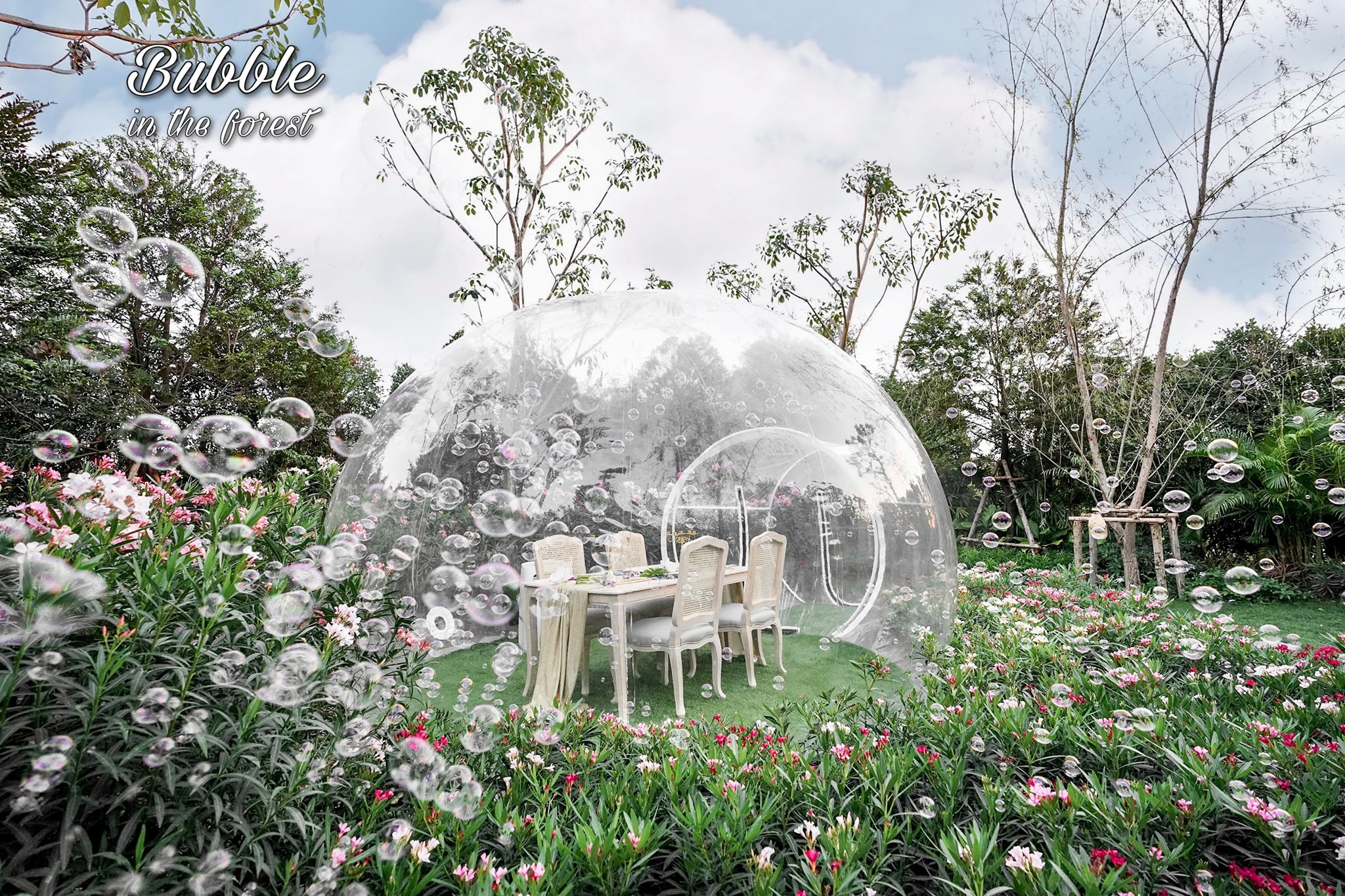 Bubble-in-the-forest-ivivu-7