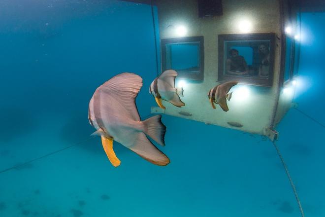 Atlantis-the-Palm-Dubai-ivivu-4